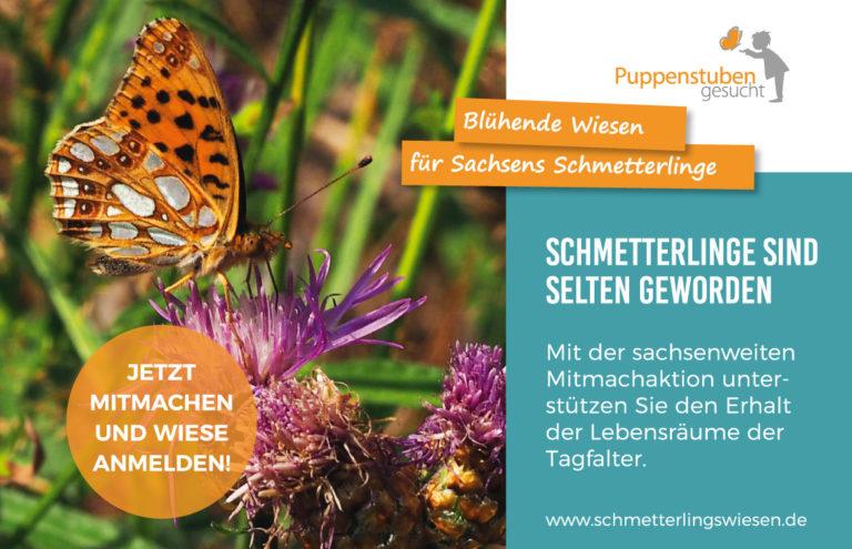 """Initiative """"Sachsen blüht"""""""