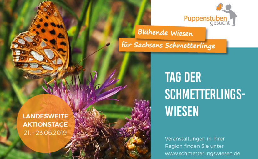 Tag der Schmetterlingswiesen 2019 LaNU