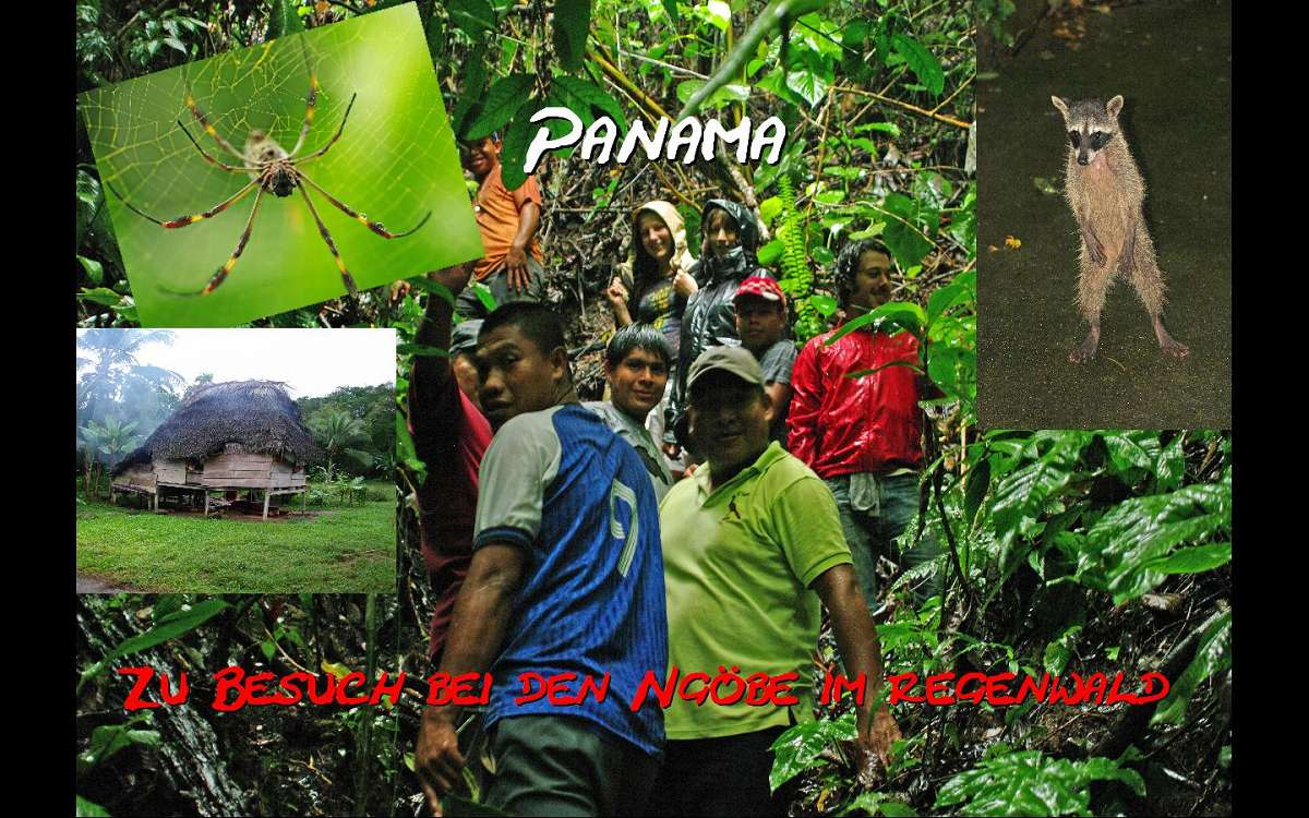 Wildes Panama